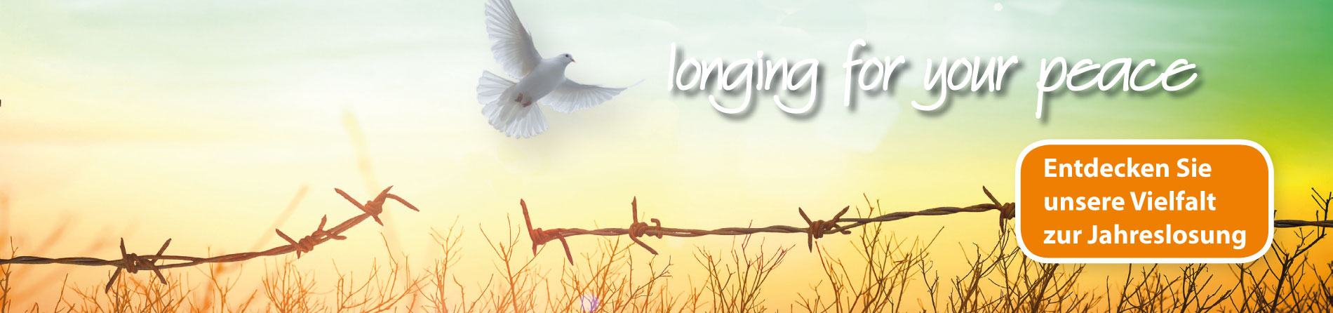 "Songs & Kanons, CDs, Poster & mehr , Kennen Sie unsere Notenausgabe ""Longing for your peace""